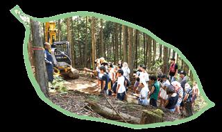 3つの体験学習:自然・環境を守る