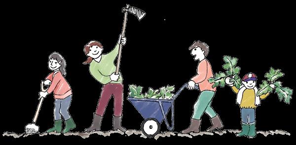 無農薬野菜づくりに挑戦!